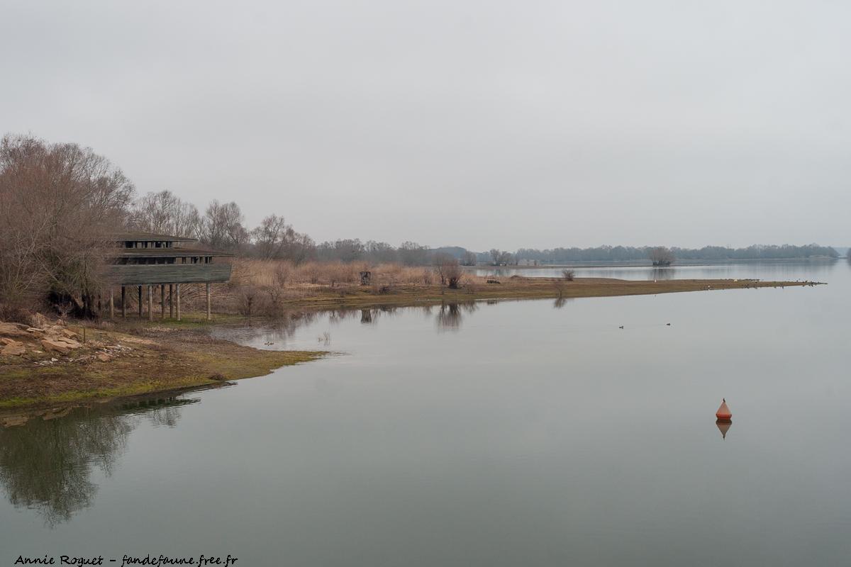 Observatoire du Der vu depuis la digue