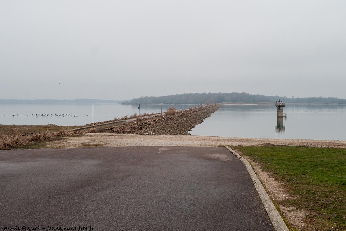 Digue séparant le bassin Nord (à droite) et le Lac du Der (à gauche)